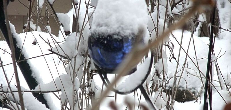 BLUE BALL WINTER SNOW 2010