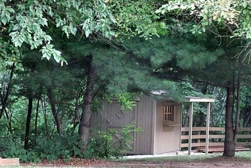 STARVED ROCK CABIN ON EDGE OF WOODS 2011 - Copy